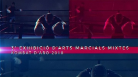 3ª Exhibició d'Arts Marcials Mixtes Kombat Aro 2018 Part 2
